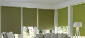 roller blinds cape town 3