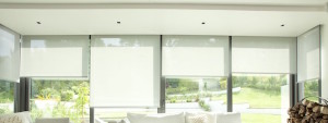 roller blinds cape town 2 600 wide